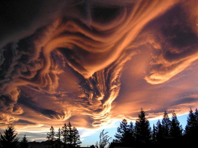 13 природних оптичних ілюзій (фото)