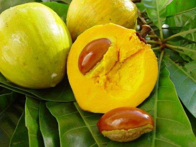 20 екзотичних фруктів зі всього світу, про які ви навіть не чули