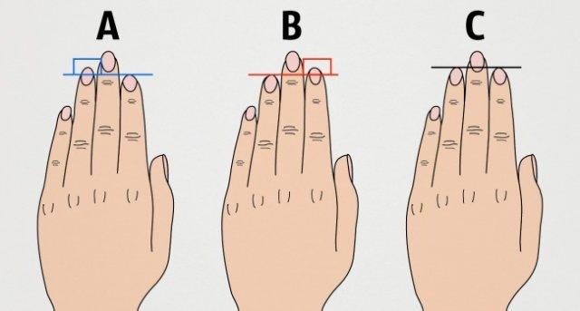 Що довжина пальців руки говорить про ваш характер