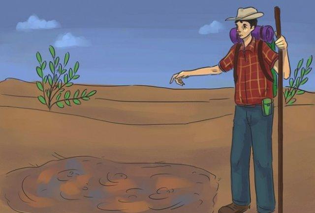 Що робити, якщо вас засмоктали сипучі піски? (відео)