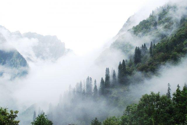 Дивовижне видовище: туманопад в горах (відео)