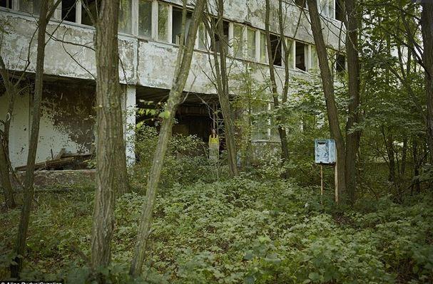 Колишня мешканка Прип'яті зняла емоційні кадри в зоні відчуження (фото)