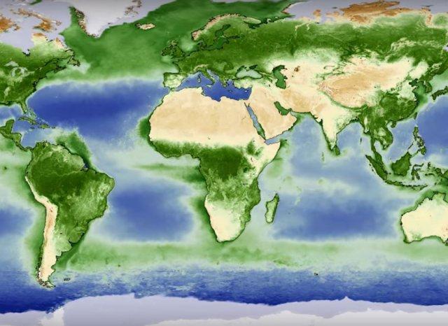 Як змінюється зелене покривало Землі протягом року (відео)