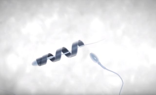 Спермобот: двигун для сперматозоїдів (відео)