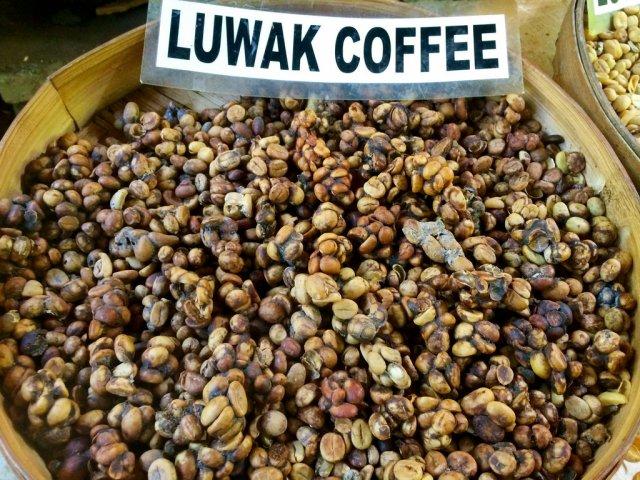 Найдорожча в світі кава