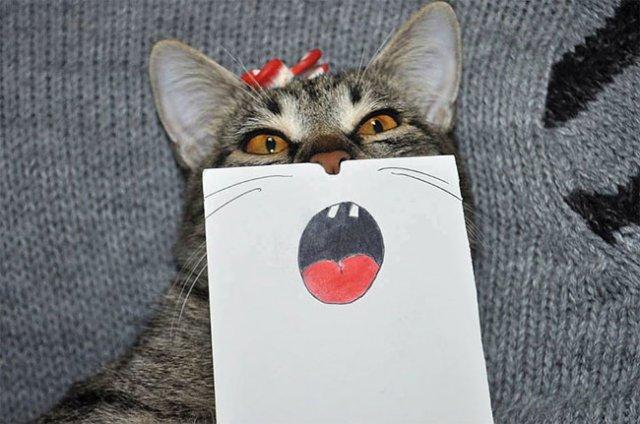 Як би виглядала кішка, якби володіла емоціями? (фото)