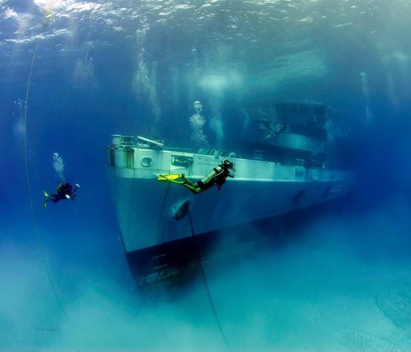 Гарні і незвичайні речі, які можна зустріти під водою (фото)