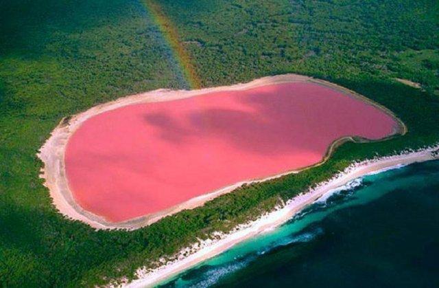 Як було розгадано загадку рожевого озера? (відео)