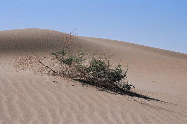 Під пісками китайської пустелі знайдено океан
