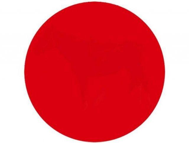 Тест на зір: що ви бачите всередині цього червоного круга?