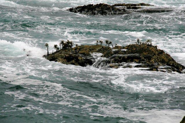У Тихому океані зникло п'ять островів