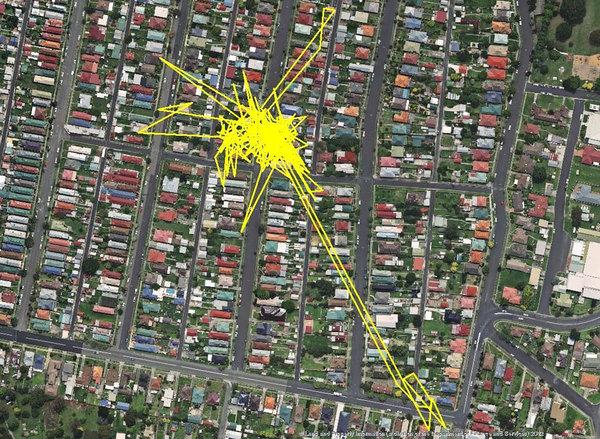 GPS-трекер і нічні пригоди вашого кота
