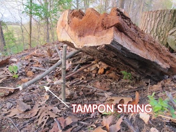 10 способів використання тампона в екстремальних умовах