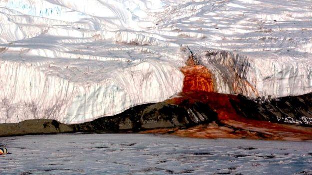 Сім найбільш незвичайних природних явищ на планеті (фото)