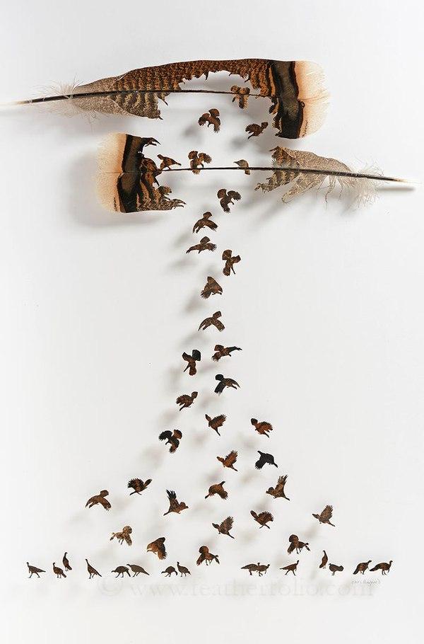 Художник вирізає неймовірні картини з пір'я (фото)