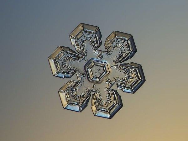 Макро-фотографії сніжинок (фото)