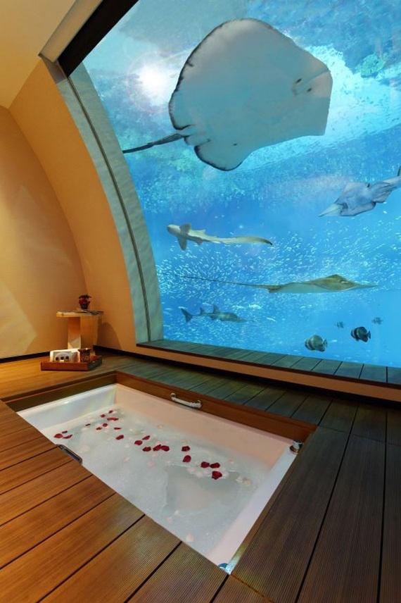 Готельні номери з виглядом на акваріум (фото)