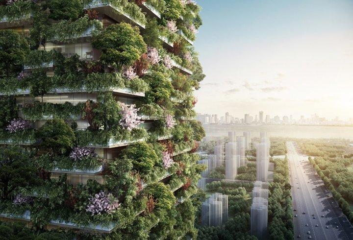 «Вертикальний ліс» висотою 200 метрів з'явиться в Китаї (фото, відео)