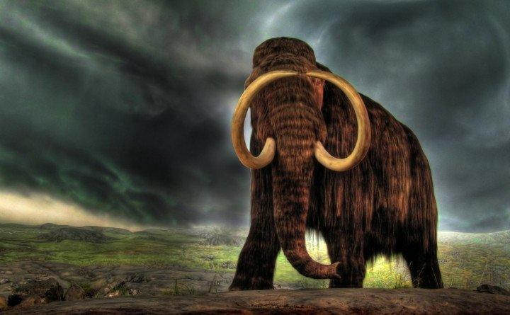 Американські вчені заявили, що через два роки на Землі знову з'являться мамонти