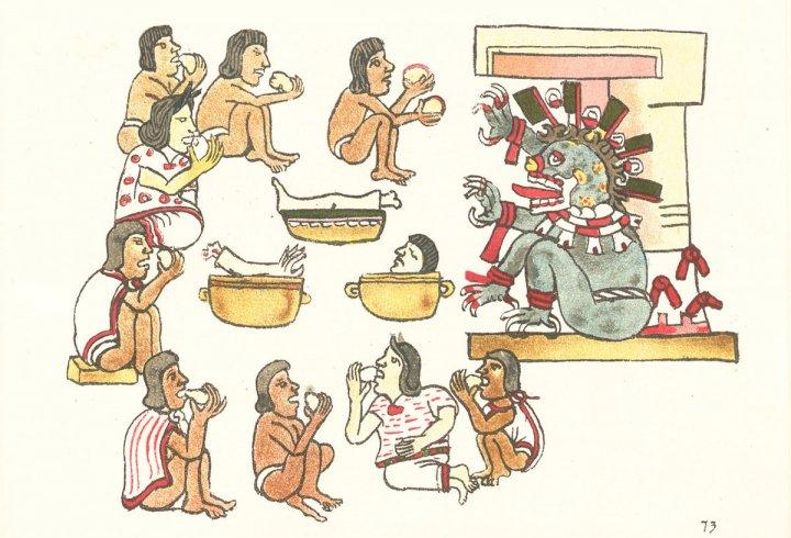 Як іспанці знищили цивілізацію ацтеків: нова версія - бактеріологічна зброя