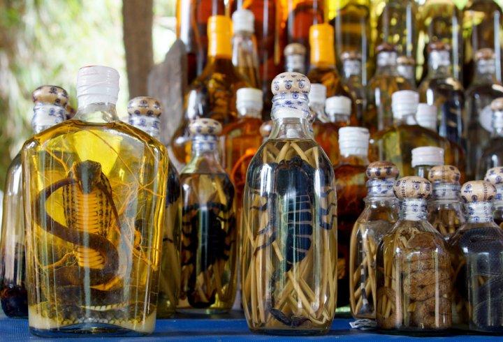 «Зміїний еліксир» - східний лікувальний напій