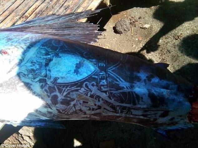 На Філіппінах спіймали рибу в дивних візерунках, схожих на тату (фото)