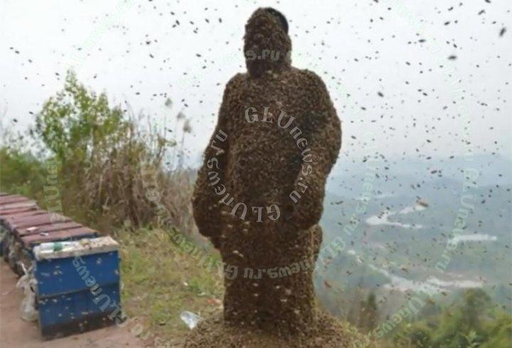 Китаєць заради реклами покрив себе «ковдрою» з 460 тисяч бджіл (відео)