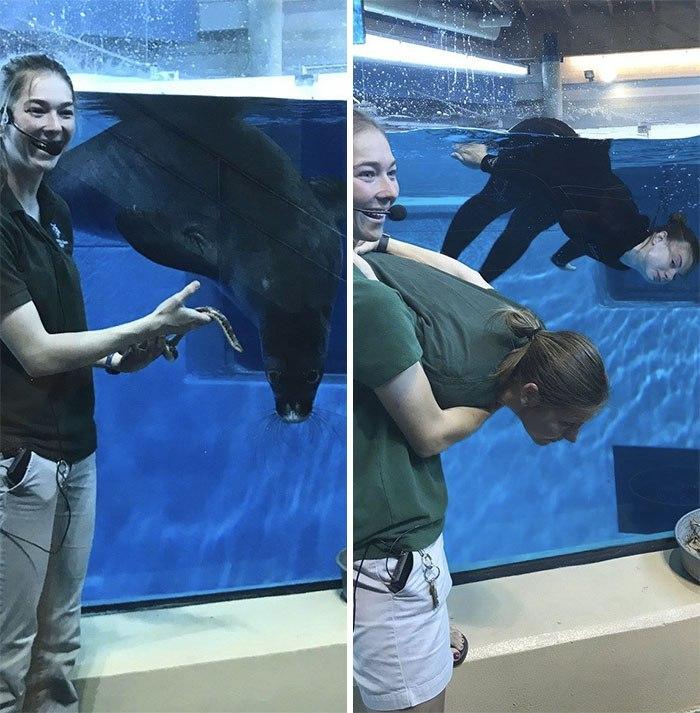 Працівники зоопарку імітують поведінку тварин, щоб залучити більше відвідувачів (фото)