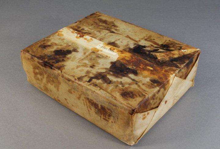В Антарктиді знайшли столітній пиріг, який ще не зіпсувався (фото)