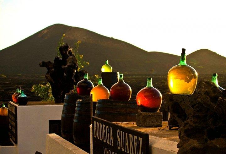 Вода з повітря. Як вирощють виноград в посушливому Лансароте (фото)