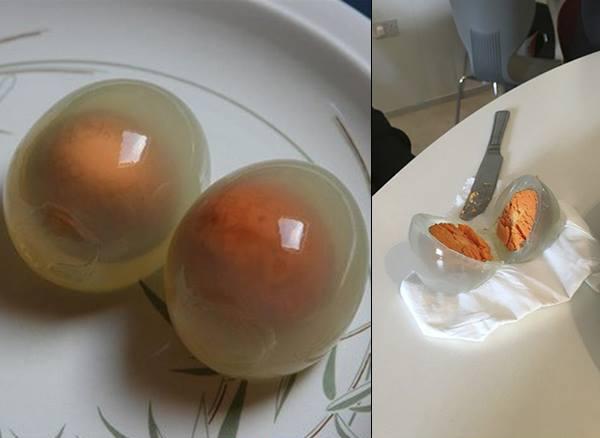 Варене яйце пінгвіна (фото)