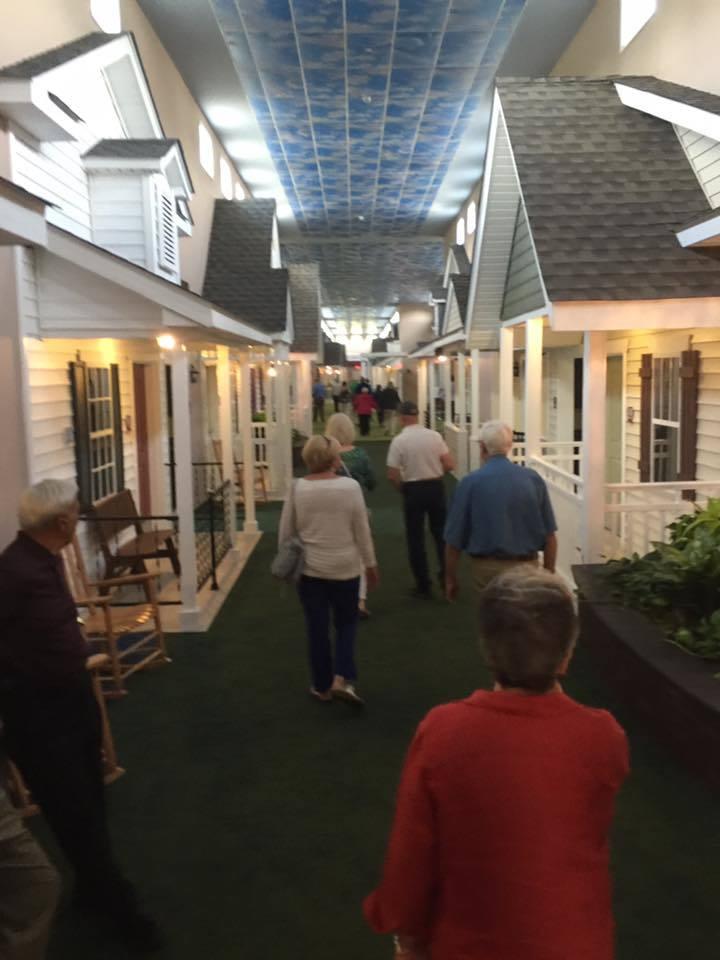 Дім для людей похилого віку з окремими кімнатами-будиночками (фото)