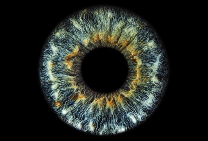 Краса людських очей (фото)