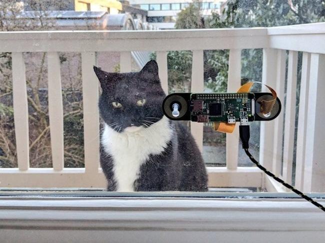 Голландський інженер розробив систему розпізнавання морди свого кота, щоб пускати його додому