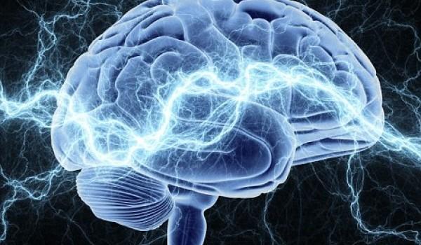 5 фактів про мозок, які пояснюють нашу дивну поведінку