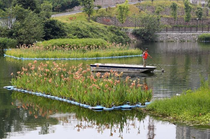 Плавучі еко-острівці в Китаї (фото)