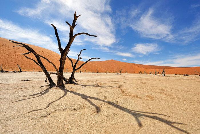 Мертва долина Намібії (фото)