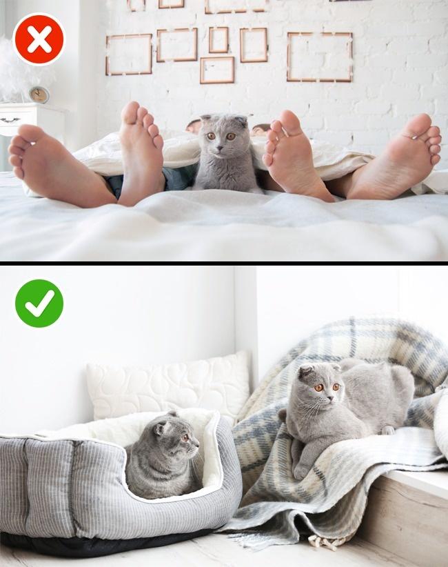 11 речей, які роблять щасливі пари перед сном