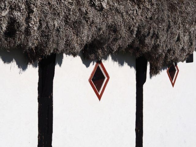 Дах з морських водоростей не боїться ні вогню, ні дощу (фото)
