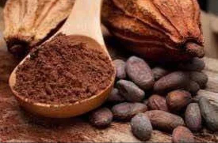 Як робиться шоколад (фото)