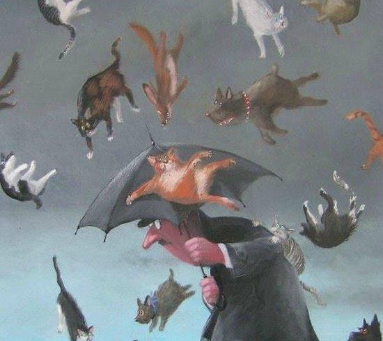 Чому про сильний дощ англійці кажуть: «Дощ котів і собак»
