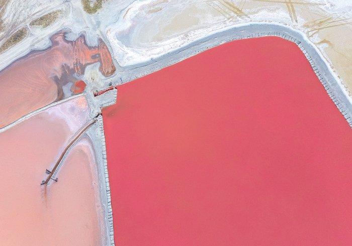Рожеві озера є й в Україні (фото)