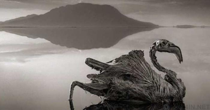 10 неймовірно сюрреалістичних місць нашої планети (фото)