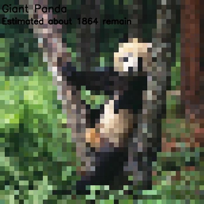 Кількість пікселів дорівнює кількості особин видів, що вимирають