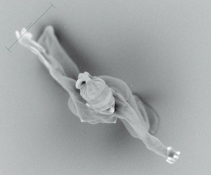Найменша у світі статуя людини, яка була створена за допомогою квантової фізики