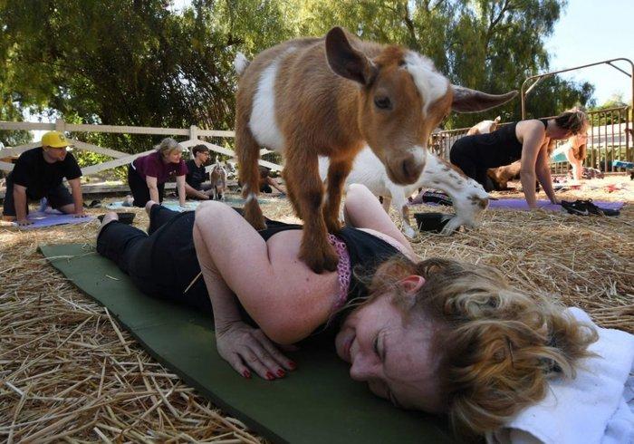 6 екзотичних способів відпочинку з усього світу (фото)