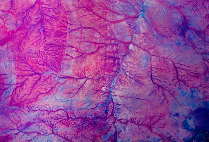 Космонавт представив добірку своїх кадрів, зроблених на МКС (фото)