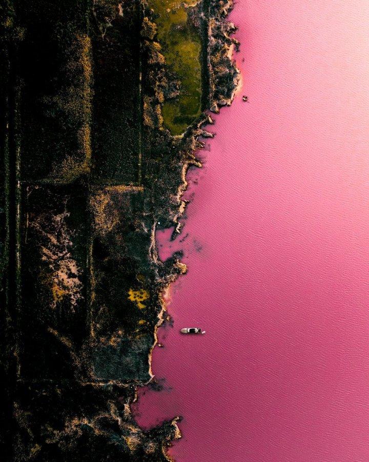 Найкращі фото природи конкурсу Agora 2020 (фото)