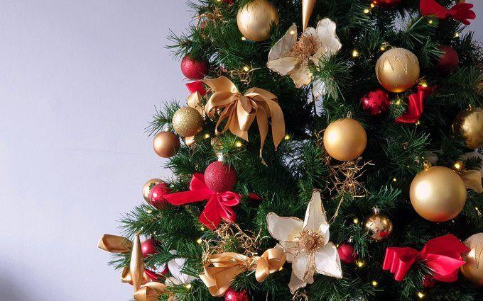 Походження новорічної ялинки