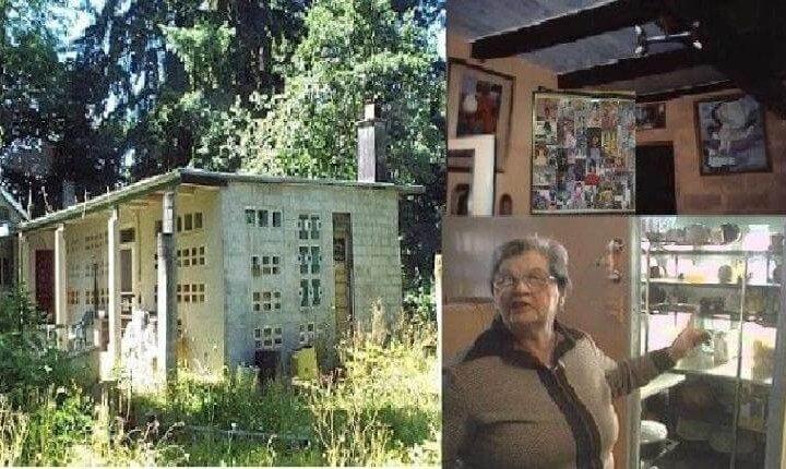 Жінка, яка винайшла будинок, що сам себе прибирає (фото)